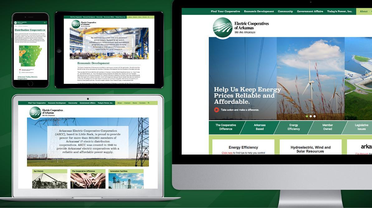 ECA Website Screenshots